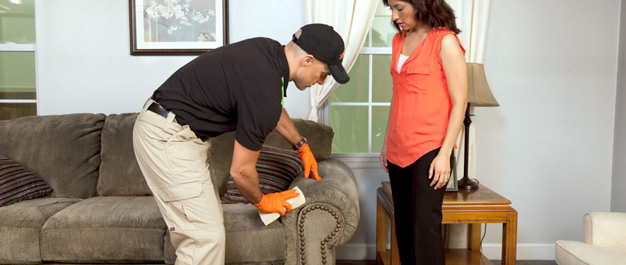 Westport, CT carpet upholstery cleaning