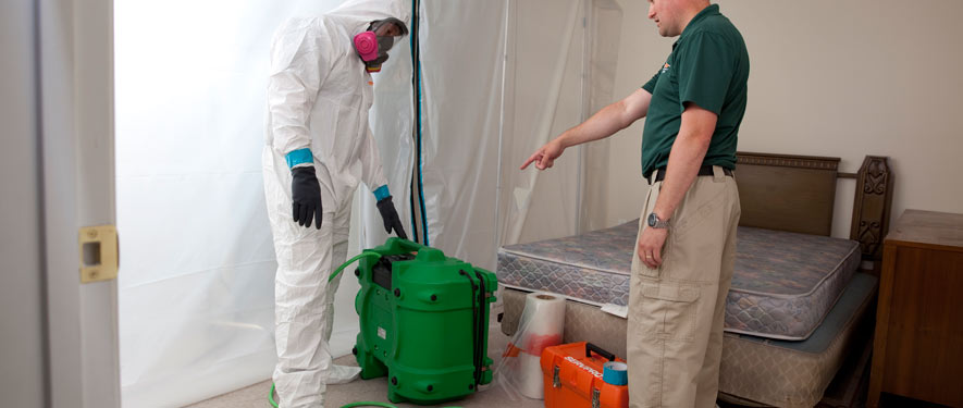 Westport, CT mold removal process